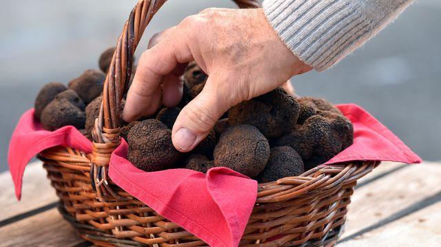truffes de lalbenque - cahors sudreau